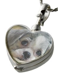 pet cremation jewelry glass heart locket shown shwon with dog photo