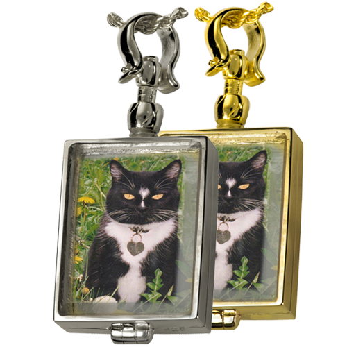 Pet Memorial Jewelry: Victorian Glass Rectangle Locket