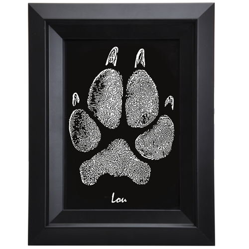 Wholesale Framed B&W Art Pet Print- Pawprint