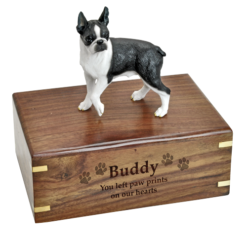 boston terrier figurine medium wood urn engraved