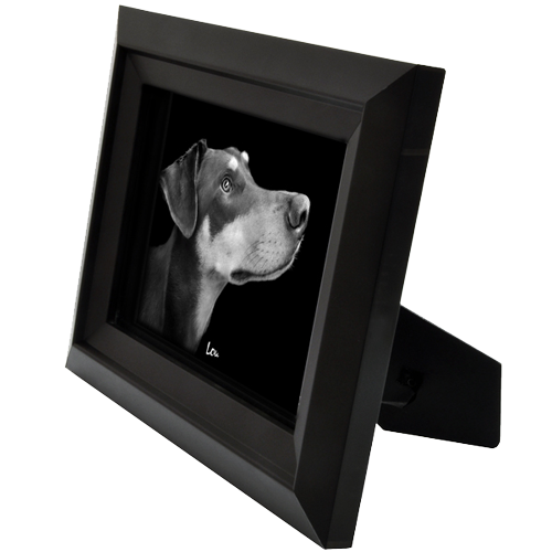Wholesale Framed B&W Pet Memorial Portrait