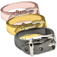 Wholesale Pet Cremation Jewelry Ring Collar shown in silver and gold metals