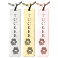 2 paw prints plus name engraved on vertical bar pendant