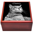 Front view of Cherry Wood Photo Tile Cat Urn Box