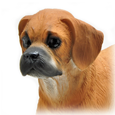 Wholesale Puggle dog figurine detail