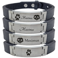 stainless steel and leather bracelet with different pet design options