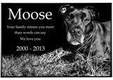 "Wholesale Pet Photo Laser Engraved Granite Flat Headstone- 2"" thick"