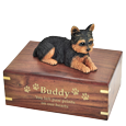 Wholesale Yorkshire Terrier, Puppycut figurine urn with gold engraved front