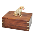 Wholesale Labrador Retriever, Yellow wood urn