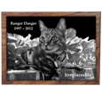 Tile sample shown of Perfect Wooden Box Cat Urn with Photo Tile