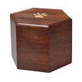 Side view of paw print hexagon wood pet urn