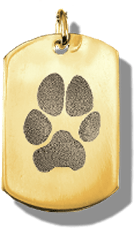 Pet Paw Print Jewelry